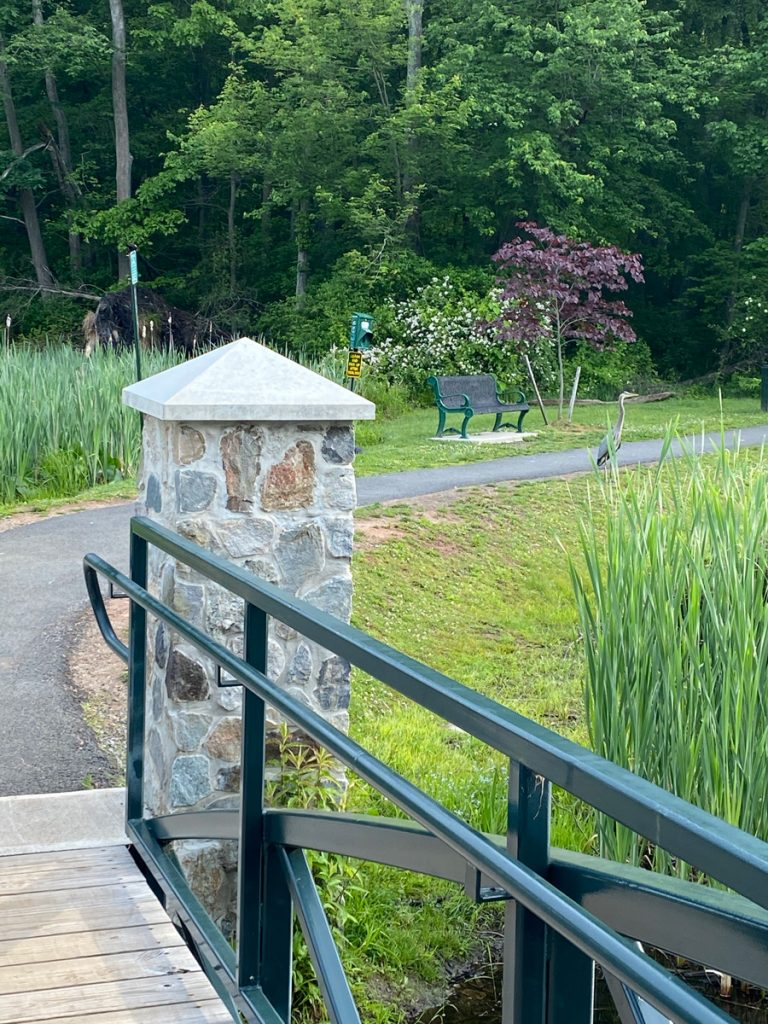 Spot the heron at Muriel Hepner Park in Denville NJ - DenvilleGuide.com